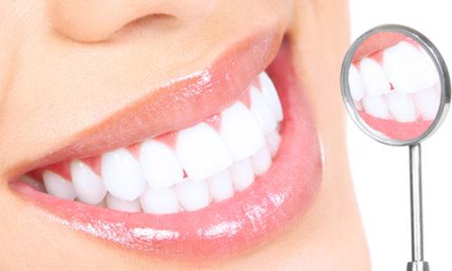 Dental Health in Warner Robins GA 31088